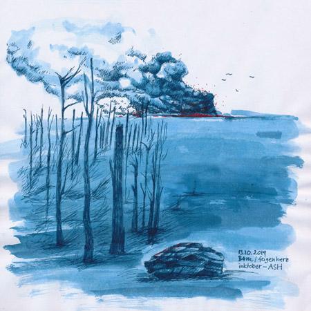 13-inktober2019-ASH-w, Tuschezeichnung, verbrannte Bäume, Baumstümpfe, im Hintergrund Brand, Rauchwolken, Asche