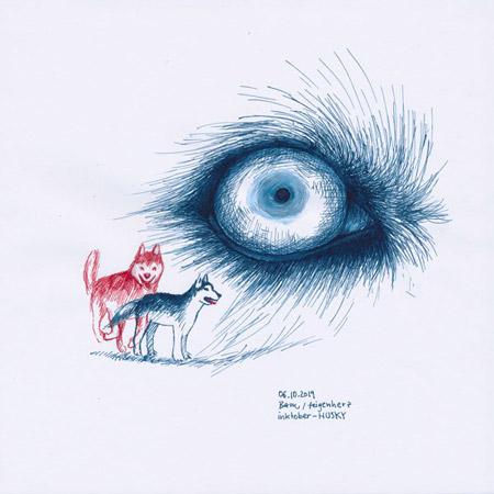 6-inktober2019-HUSKY-w, Tuschezeichnung, Auge eines Huskys, darunter zwei Huskys kleiner, rot und blau