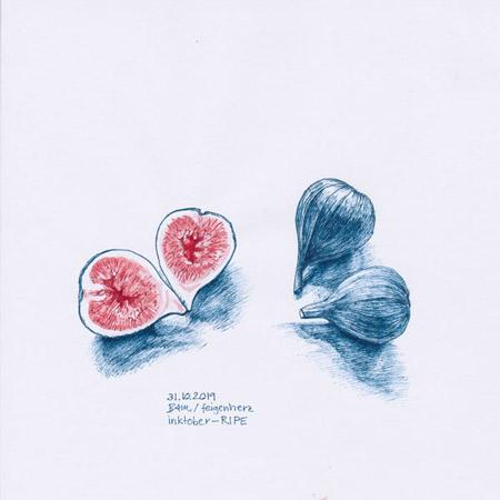 31-inktober2019-ripe-w, Tuschezeichnung, Stilleben mit 3 Feigen, eine aufgeschnitten und zum Herz gelegt